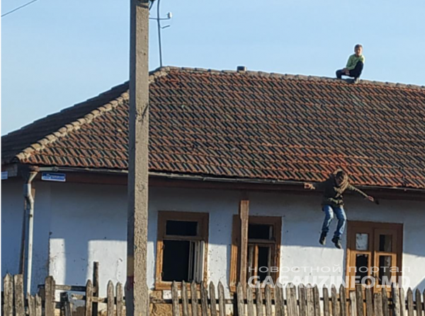 copii acoperiș